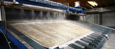 Wilt u uw Perzisch tapijt reinigen laten?